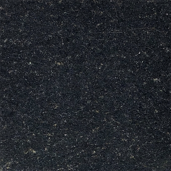 San Gabriel Black Granite Tile 12x12